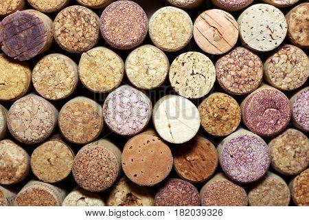 used wine corks / many wine corks / closeup of a wall of used wine corks