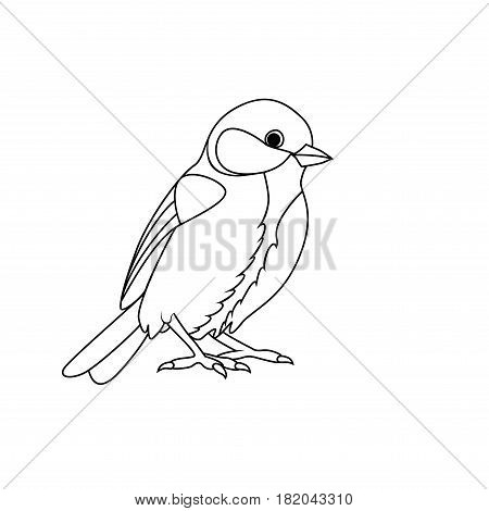 Coloring book: Tit on a white background