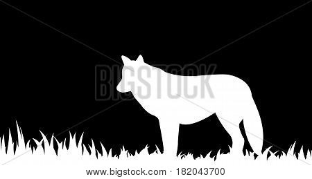 Vector illustration the silhouette of wolf in the grass.