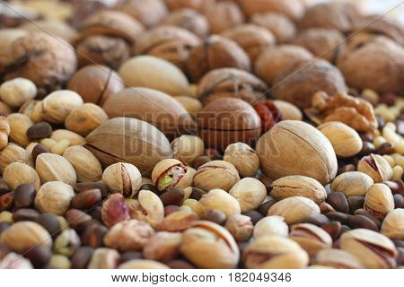 Spilled nuts of different kinds - macadamia, pecans, pistachios, pine nuts, walnut