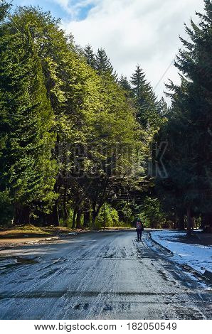 VILLA TRAFUL NEUQUEN ARGENTINA - SEPTEMBER 9 2015: A backpacker walking alone on the road leaving Villa Traful in Neuquen Argentina.