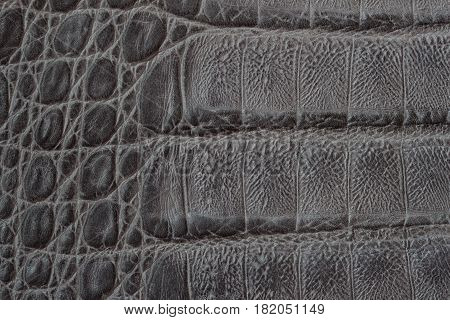Genuine leather texture backgroundr close-up, embossed under the skin a reptile, crocodile skin print, trend exotic background. With place for your text, for background use.