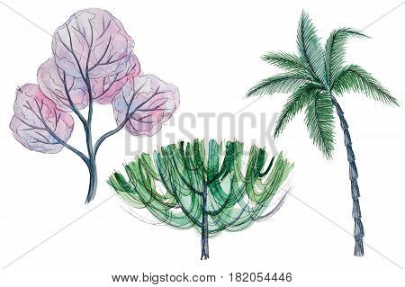 Set of hand drawn watercolor pictorial green and pink decorative trees, isolated on the white background for your landscape design
