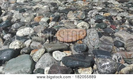 Stones under the surface of water, Nature background, River stones in the water of a small mountain stream