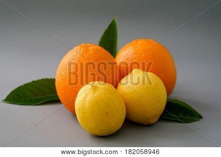 Organic orange and lemon on the gray background - Isolated