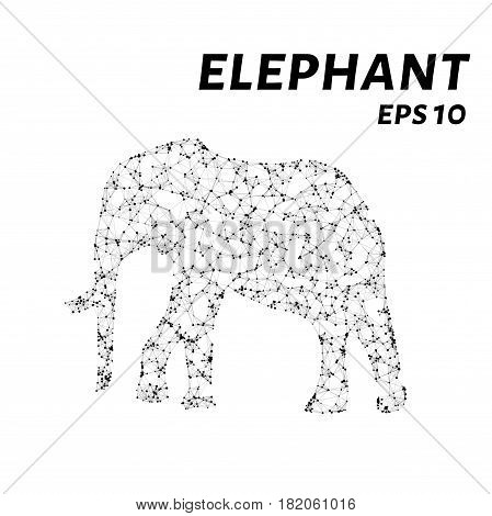 The Elephant Consists Of Points, Lines And Triangles. The Polygon Shape In The Form Of A Silhouette