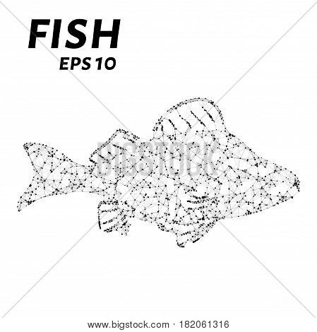 Fish Consists Of Points, Lines And Triangles. The Polygon Shape In The Form Of A Fish Silhouette On