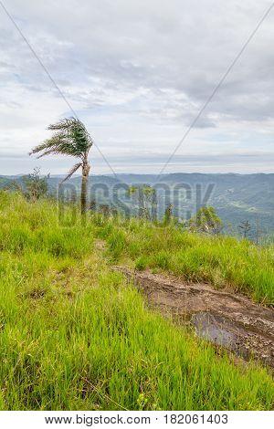Morro Do Gaucho Mountain Landscape