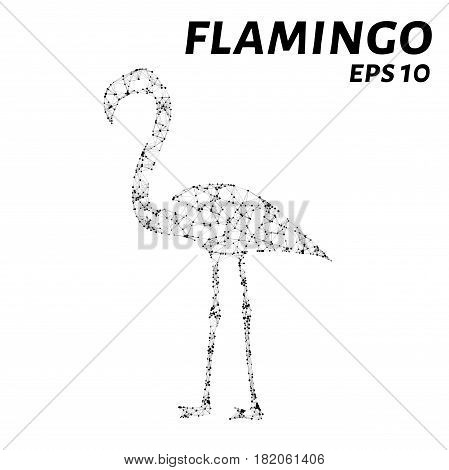 Flamingo Consists Of Points, Lines And Triangles. The Polygon Shape In The Form Of A Silhouette Of A