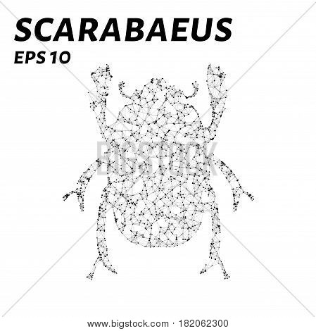 Scarab Consists Of Points, Lines And Triangles. The Polygon Shape In The Form Of A Silhouette Of A S
