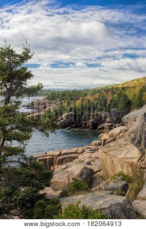 Vertical image of rocky shoreline along Atlantic ocean near Bar Harbor Maine.