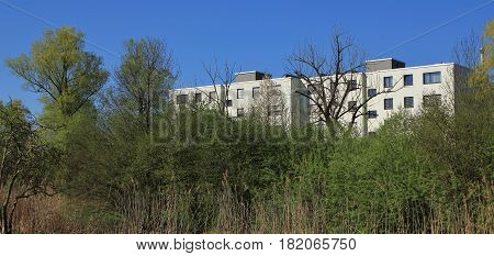 Nature versus architecture. Reconquest of nature. Residental building behind tall trees.