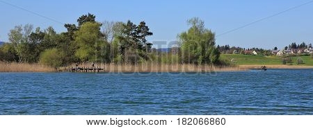 Shore of lake Pfaffikon on a spring day. Gangplank for fishing. Reed and trees.