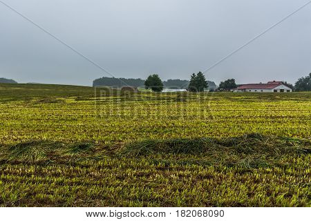Countryside in Brusy commune Cassubia region of Poland