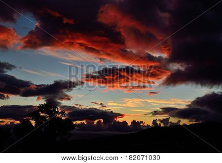 Awesome sunrise with colorful clouds and backlit tree in foreground