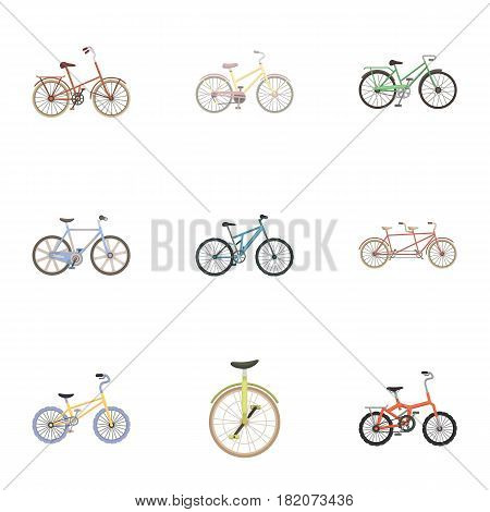 Collection of bikes with different wheels and frames. Different bikes for sport and walks.Different bicycle icon in set collection on cartoon style vector symbol stock web illustration.