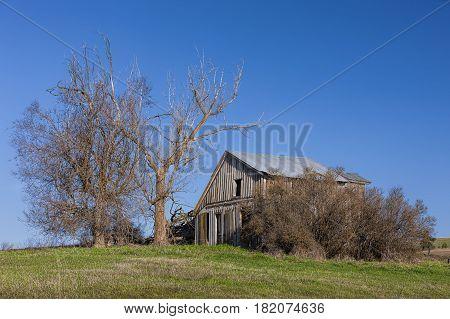 An old run down barn in early spring in Eastern Washington.