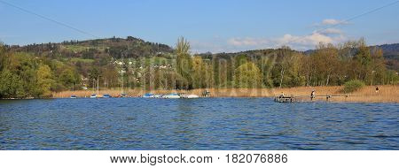 Shore of lake Pfaffikon. Spring scene in Zurich Canton Switzerland.