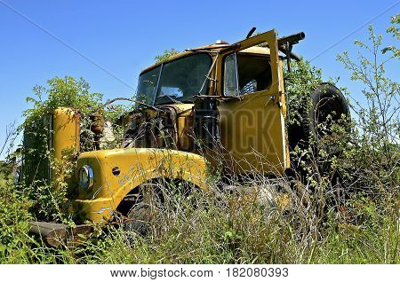 An abandoned truck cab with missing parts is left in the brush and weeds.