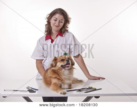 Girl Doing A Manicure To Is Dog.