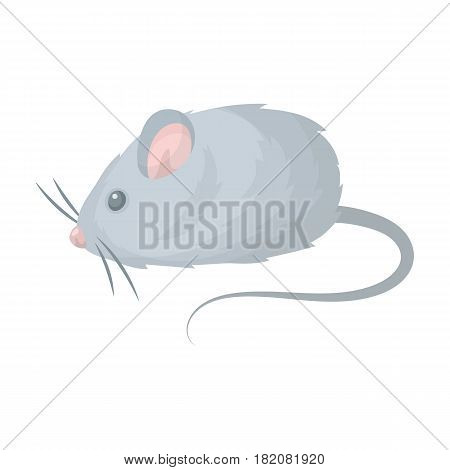 Mouse toy.Pet shop single icon in cartoon style vector symbol stock illustration .