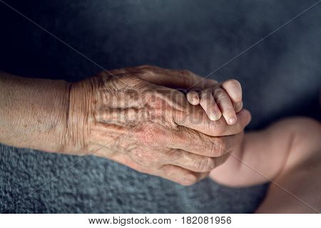 great-grandmother holds the hands of his beloved grandson by the window