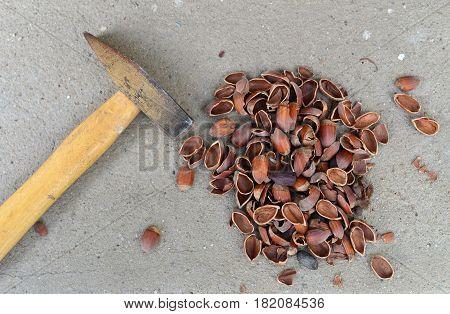 hammer and nut shells crushed hazelnuts food background
