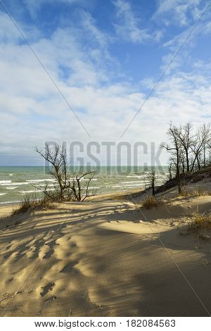 Sunrise over Indiana dunes in the spring.