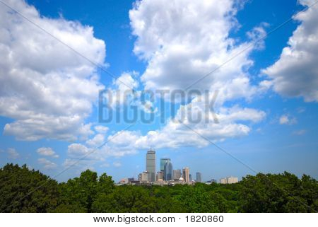 Boston Skyline using wide angle with trees in the foreground. poster