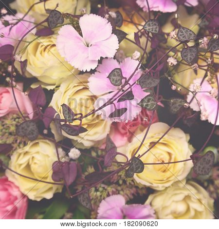 Floral matte background. Yellow roses and pink carnations with purple foliage. Retro style processing.