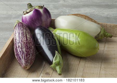 Fresh variety of raw eggplants