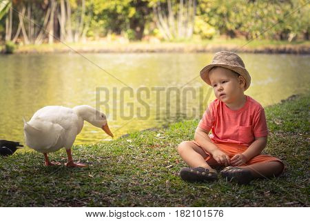 Boy and geese near lake. Mauritius
