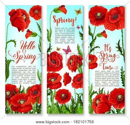 Spring banners with poppy flowers design for springtime holiday greetings and seasonal quotes. Design set of blooming nature and flourish green field with butterflies and blossom buds