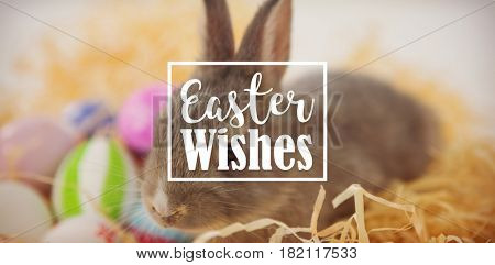Easter greeting against easter eggs with easter bunny in nest