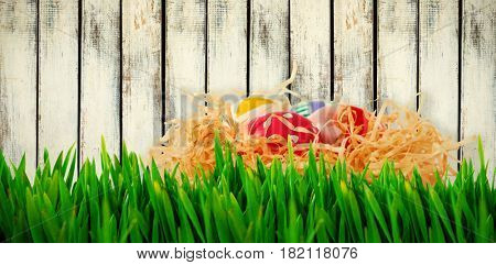 Grass growing outdoors against wood background