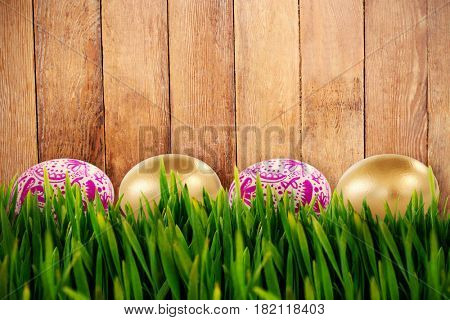 Grass growing outdoors against wood panelling