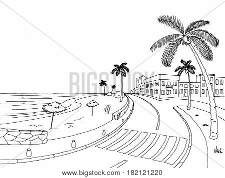 Street road palm tree graphic black white landscape sketch illustration vector