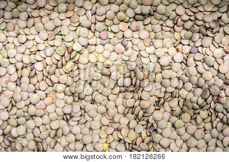 Close up beige lentils for background texture