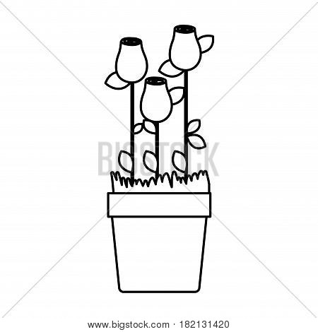 silhouette rosebuds planted with leaves in flowerpot vector illustration