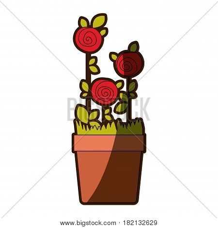 colorful shading drawing roses planted with leaves in flowerpot vector illustration