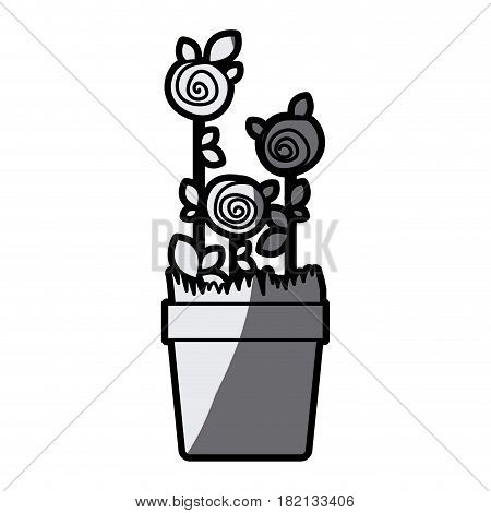 gray scale silhouette drawing roses planted with leaves in flowerpot vector illustration