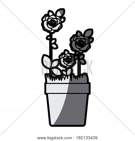 gray scale silhouette flowered roses planted with leaves in flowerpot vector illustration
