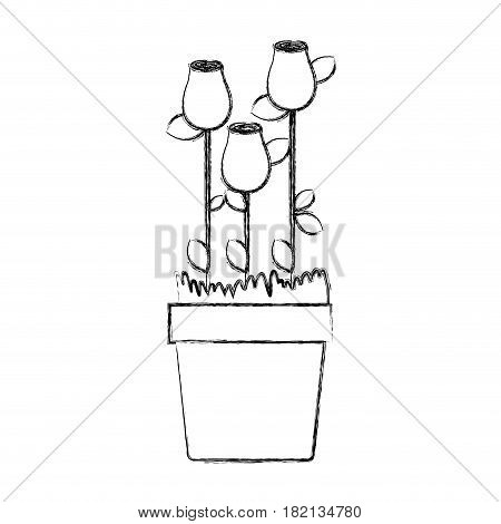 blurred silhouette rosebuds planted with leaves in flowerpot vector illustration