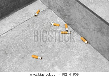 Cigarette butts on tile