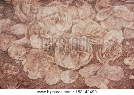 Background of Textured vintage dried Camellia flowers