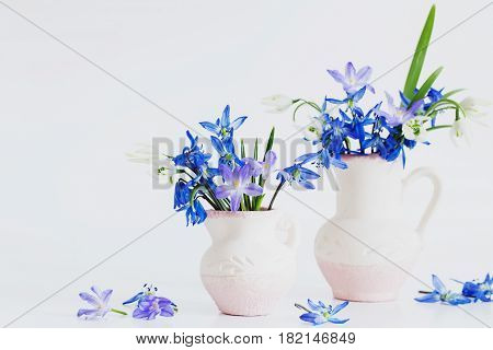 Still life with spring blue flowers on white