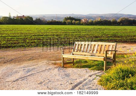 Outdoor nature wooden bench in zen garden style.