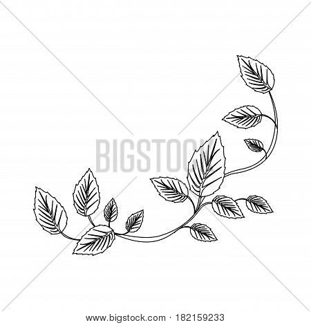 black silhouette of creeper plant vector illustration
