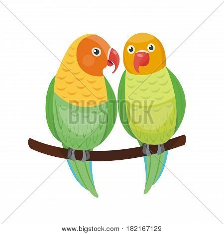 Cartoon tropical lovebird parrot wild animal bird vector illustration wildlife flying cute feather zoo color nature vivid. Perch tropics fly fauna jungle pretty colourful macaw.