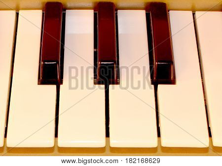 Piano keys. Full-sized keyboard. Octave Piano playing , synthesizer piano octave keys close up view